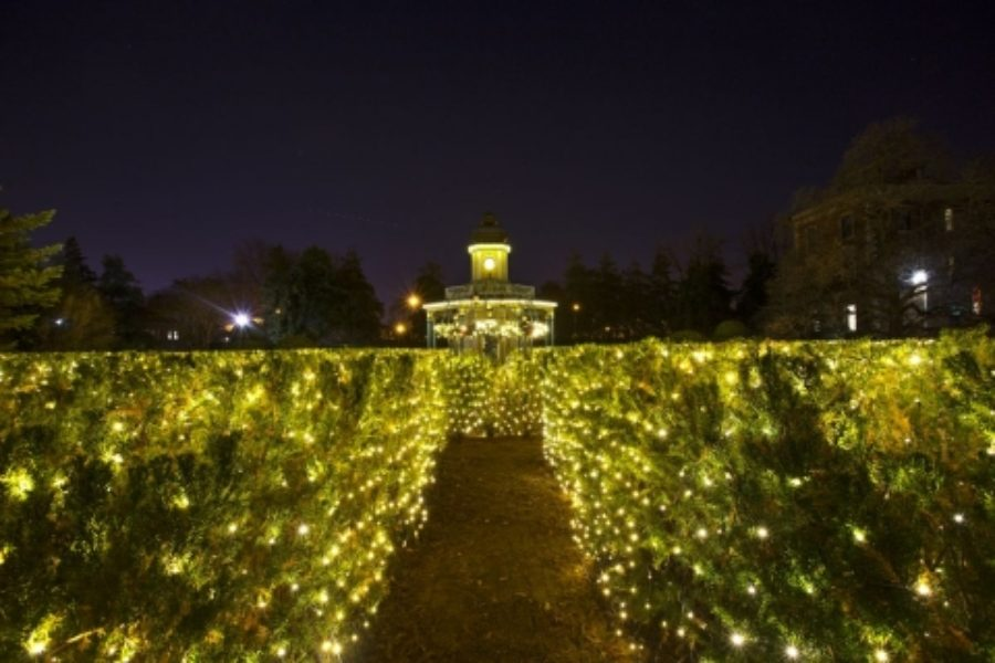 My Neighborhood: Missouri Botanical Garden's Garden Glow