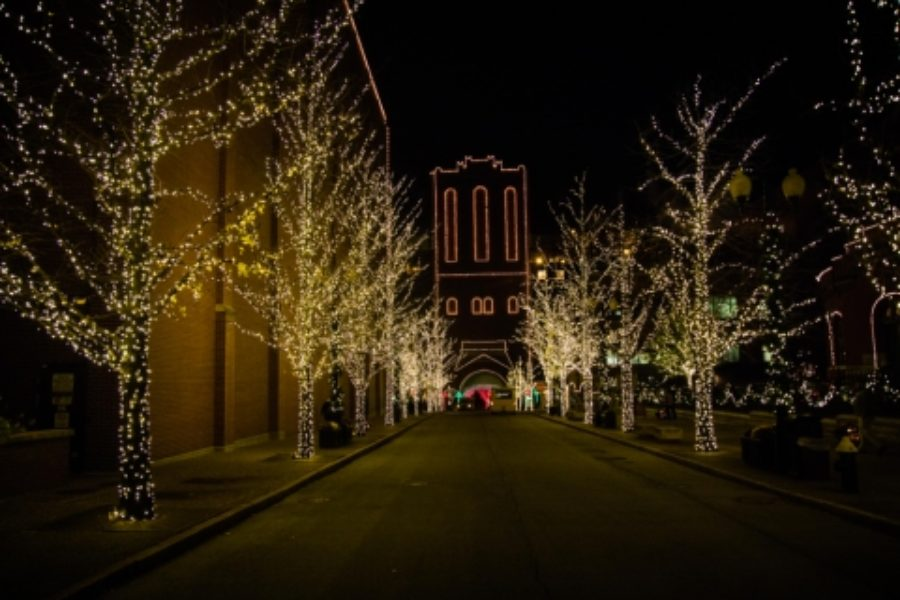 Join Anheuser-Busch for their annual Brewery Lights event