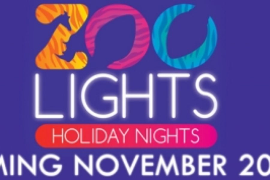 Zoo Lights Holiday Nights – San Antonio Zoo