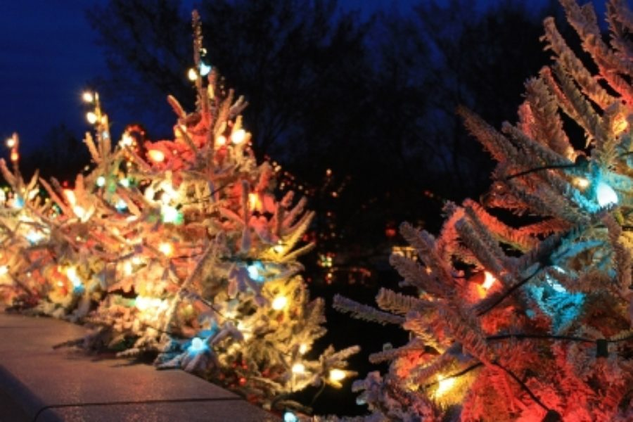 Oak Island Creative creates America's largest Christmas event!