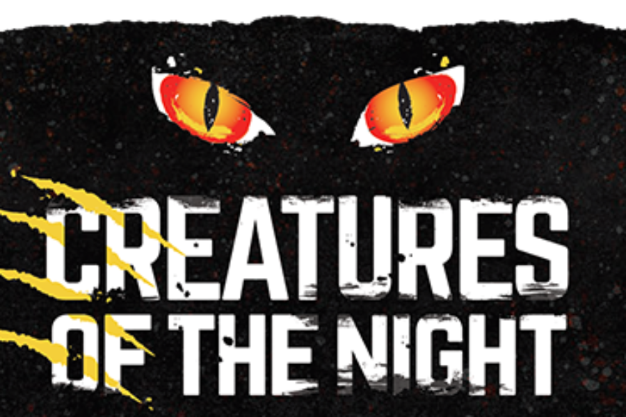 Tampa's Lowry Park Zoo – Creatures of the Night!