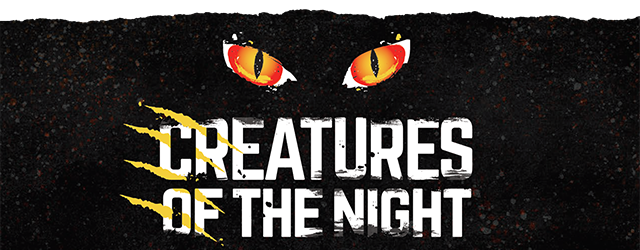 Tampa's Lowry Park Zoo – Creatures of the Night! • Oak