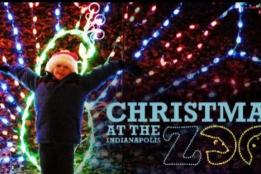 Christmas at Indianapolis Zoo