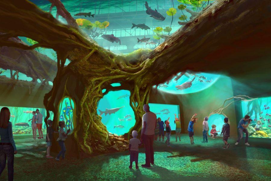 St. Louis Aquarium at Union Station – Coming Soon