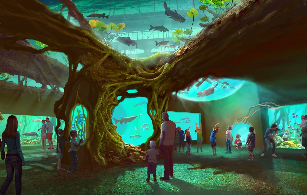 St. Louis Aquarium at Union Station – Coming Soon