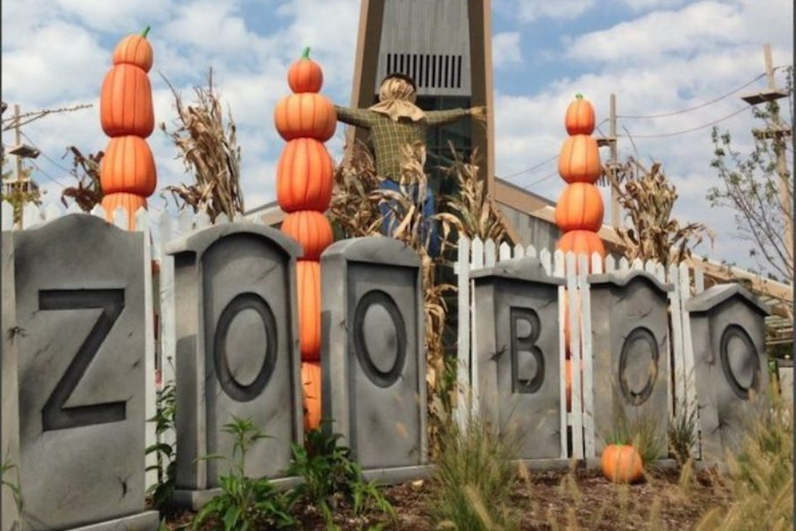 ZooBoo at Indy Zoo!